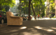 armchair on pavement berlin